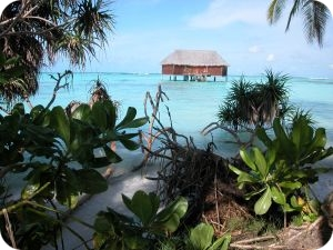Maledivy last minute